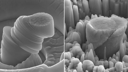 Silicon carbide-infused magnesium is super strong