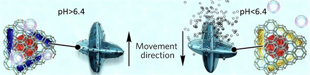 Biocatalytic self-propelled submarine-like metal-organic framework microparticles with pH-triggered buoyancy control for directional vertical motion