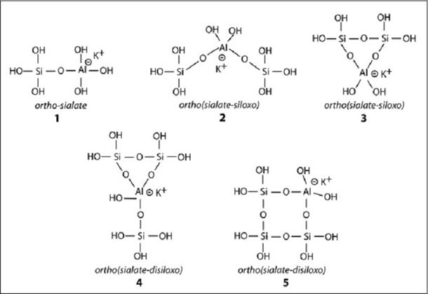 Figure 4: Five different orthosialate molecules soluble in KOH concentrated medium, adapted from North and Swaddle (2000).