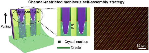 Channel-restricted meniscus self-assembly for uniformly aligned growth of single-crystal arrays of organic semiconductors