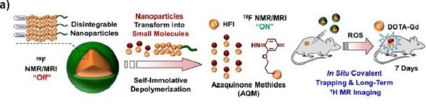 As the nanoparticles degrade, molecules for imaging and/or therapy form and are retained in the diseased tissue