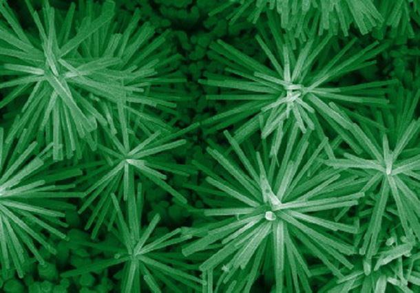 Zno Nano Flowers Materials Today
