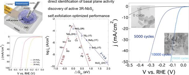 Discovering superior basal plane active two-dimensional catalysts for hydrogen evolution