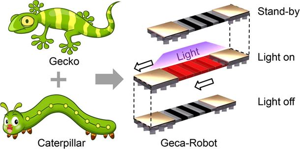 Bioinspired footed soft robot with unidirectional all-terrain mobility