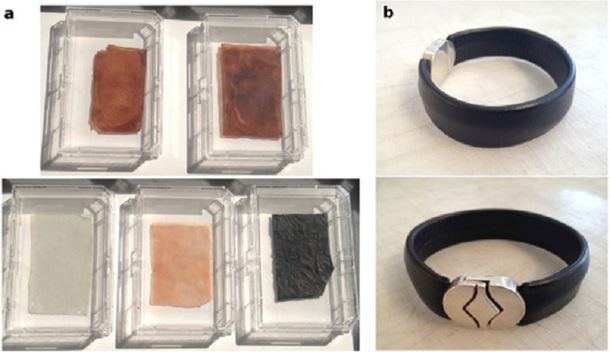 Figure 2. Tissue engineered leather samples with varying dyes (5 cm x 3 cm) as well as fabricated into a bracelet.