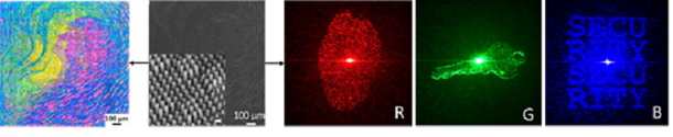 A new holographic optical device that uses four authentication images