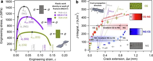 On the exceptional damage-tolerance of gradient metallic materials