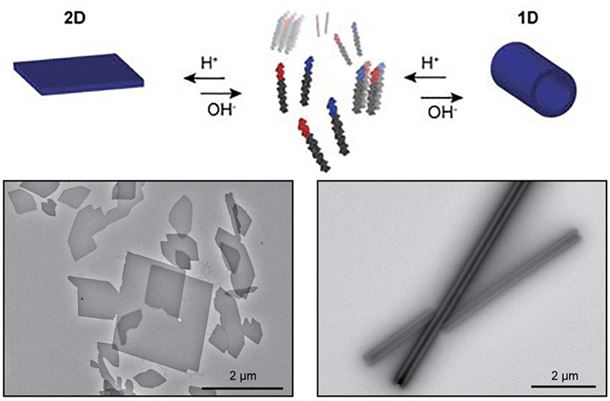 Nanomaterial that can convert from flat sheets to tubes and back again in a controllable fashion