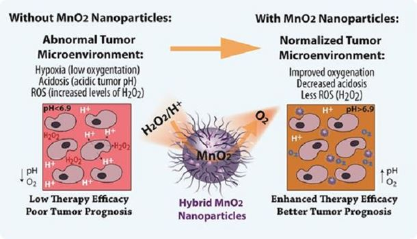 Figure 2. Schematic illustration of the abnormal tumor microenvironment resulting in resistance to therapy and the novel approach discovered by Wu's group to modulating tumor microenvironment with hybrid MnO2 nanoparticles.  Hybrid nanoparticles are composed of a biocompatible carrier (polymers, protein, solid lipids and their combinations) loaded with bioreactive MnO2 and with a PEG-like brush on the surface. The hybrid MnO2 nanoparticles can react with endogenous levels of H2O2 (ROS attenuation) and quench H+ (acidosis attenuation) and produce O2 sustainably within the tumor (hypoxia attenuation). The triple effect of the hybrid MnO2 nanoparticles also reduced levels of tumor-promoting proteins and enhanced treatment efficacy.