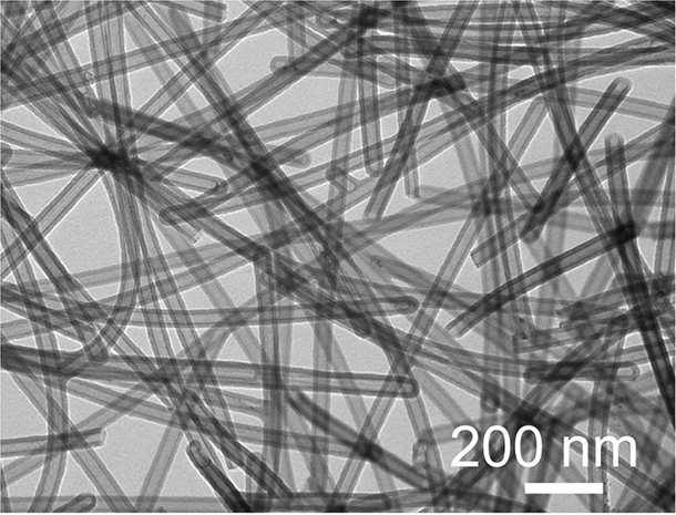 A TEM image of the CTA materials. Credit: Hui-Juan Zhan.